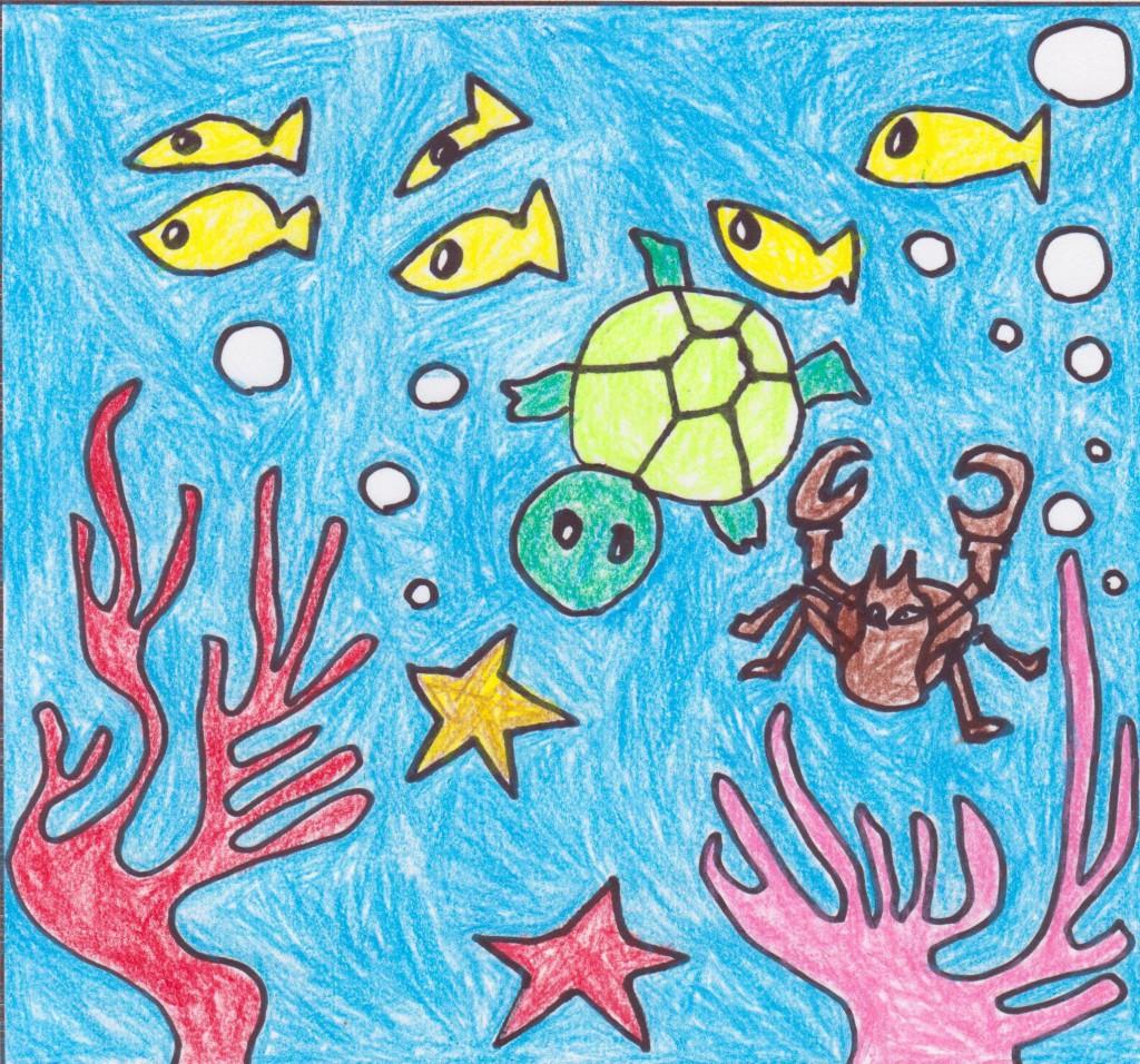 サンゴとダンス