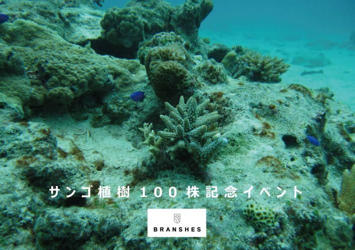 サンゴ植樹100株記念イベント バナー