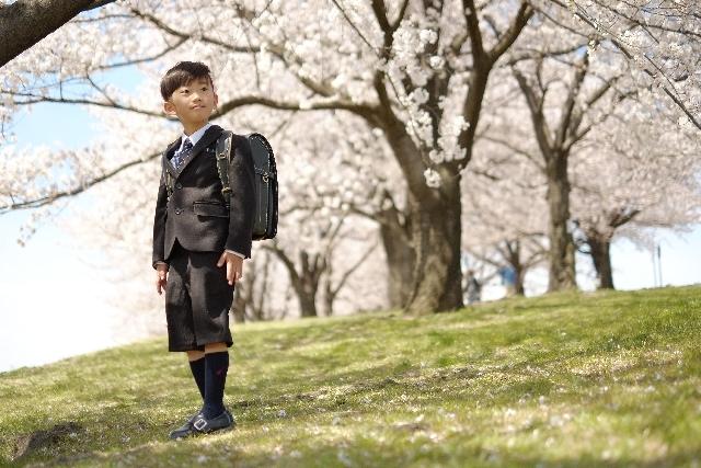 桜の下の小学生