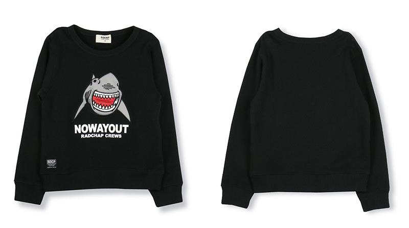 shark01_3