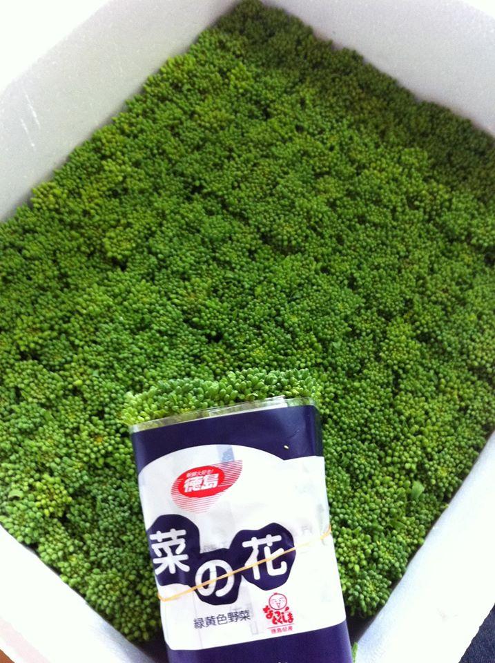 箱にびっしり入った菜の花