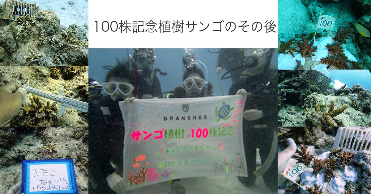100株記念最終