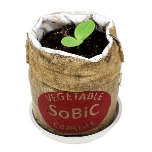 SoBiC使用イメージ