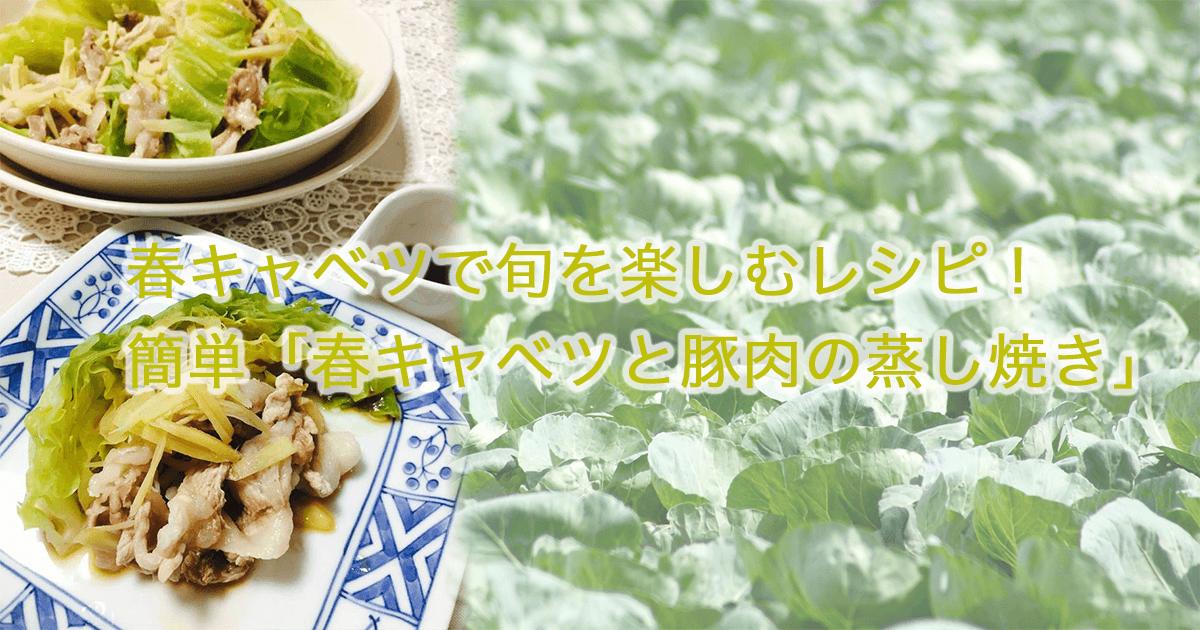 春キャベツレシピ