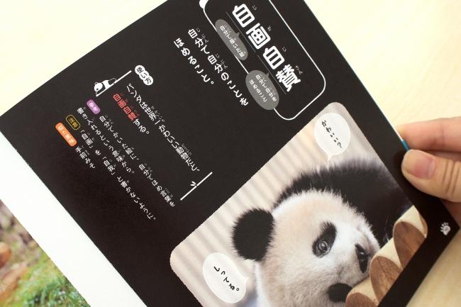 パンダでおぼえる 四字熟語の中身