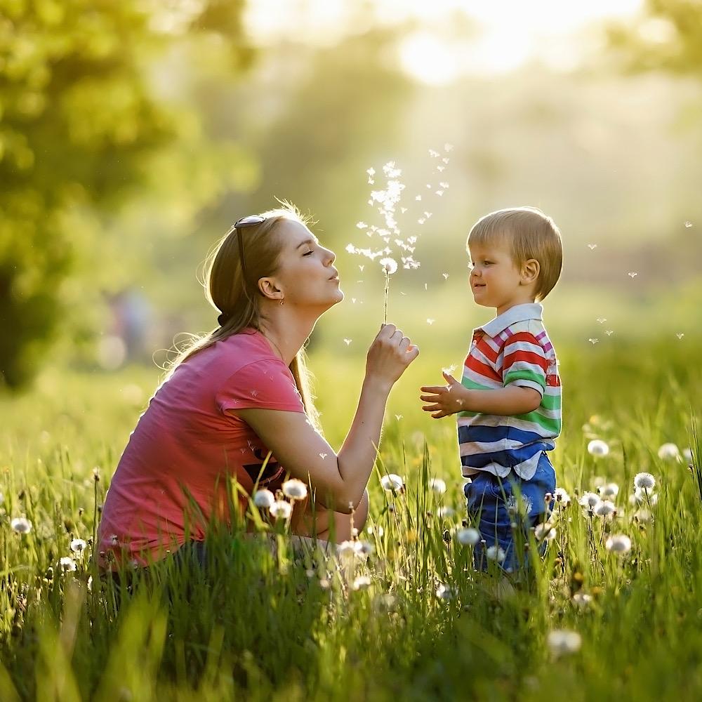 たんぽぽで遊ぶ、母と子ども