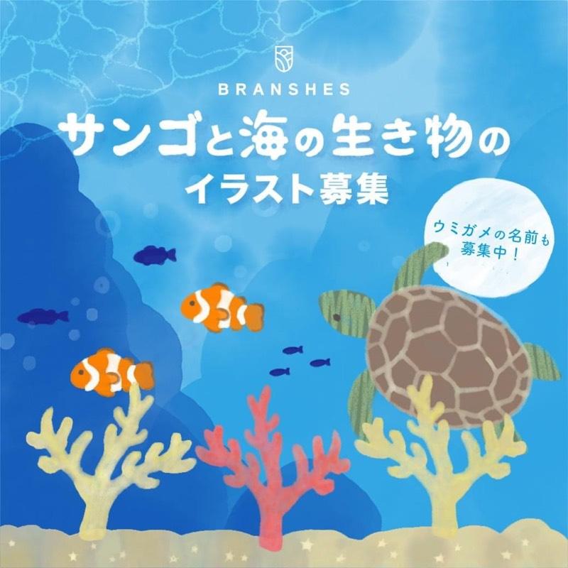 サンゴと海の生き物のイラスト大募集