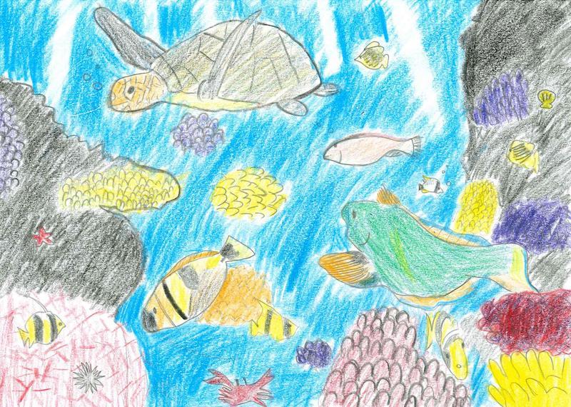 サンゴと海の仲間達