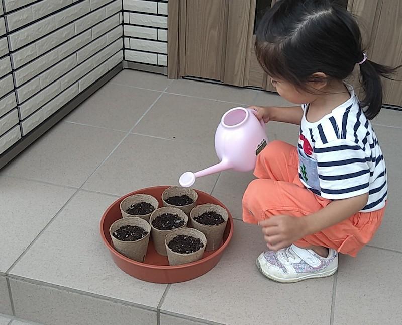お水をあげる女の子