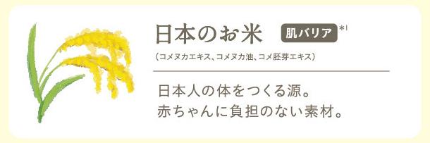 日本のお米